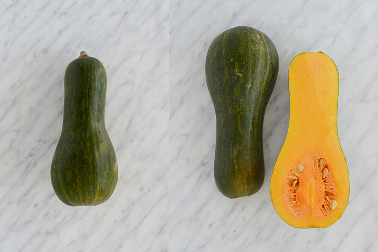 butternut orange pumpkin