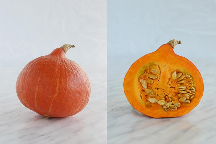 hokkaido pumpkin