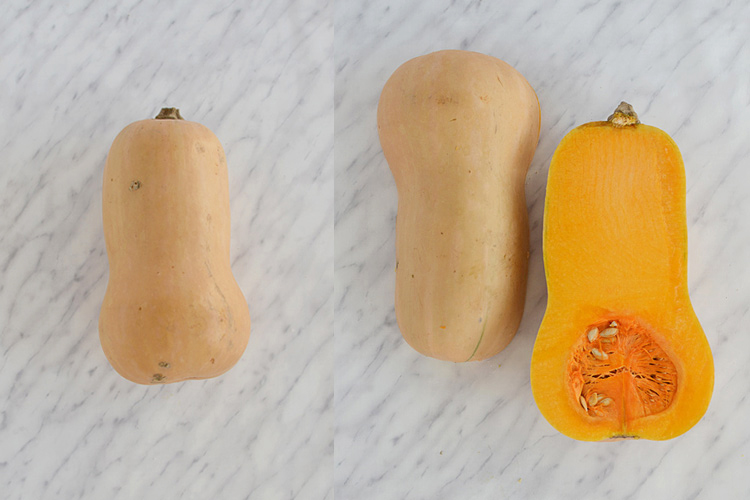 butternut squash pumpkin