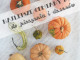 Best pumpkins for baking and desserts