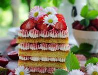 Strawberry tiramisu cake with dried strawberry powder