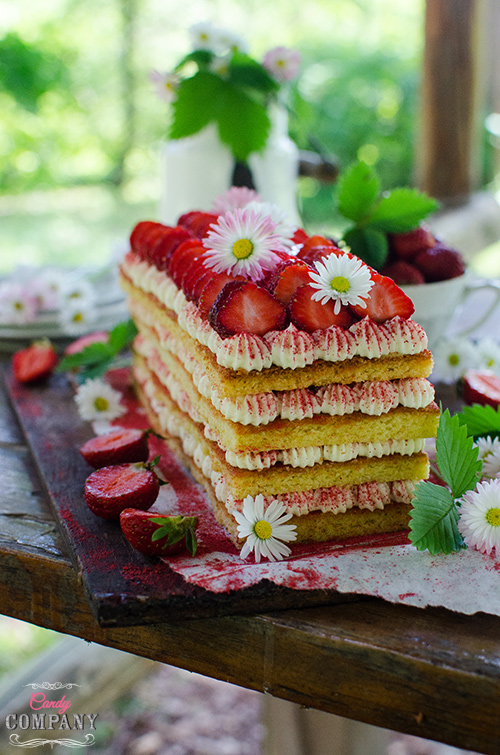 Strawberry tiramisu cake with dried strawberry powder