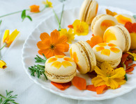 Painted mirabelle plum macarons