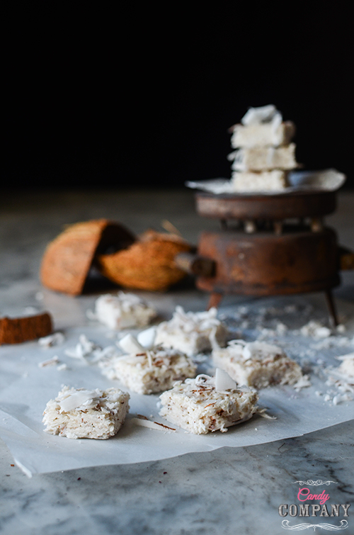 Healthy coconut bar, no sugar, no bake. Food photography by Candy Company