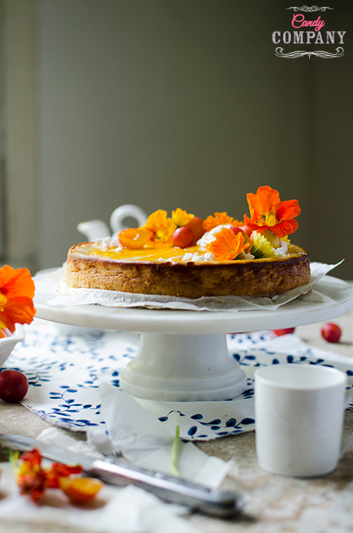 Melopita greek cheesecake recipe with honey and mirabelle plum. Food photography by Candy Company