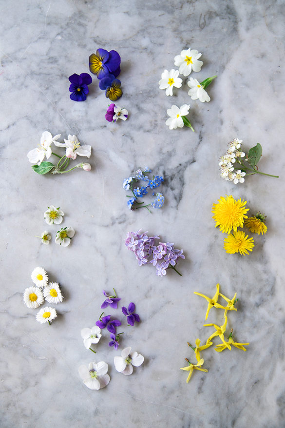 Edible flowers for cake decoration - spring