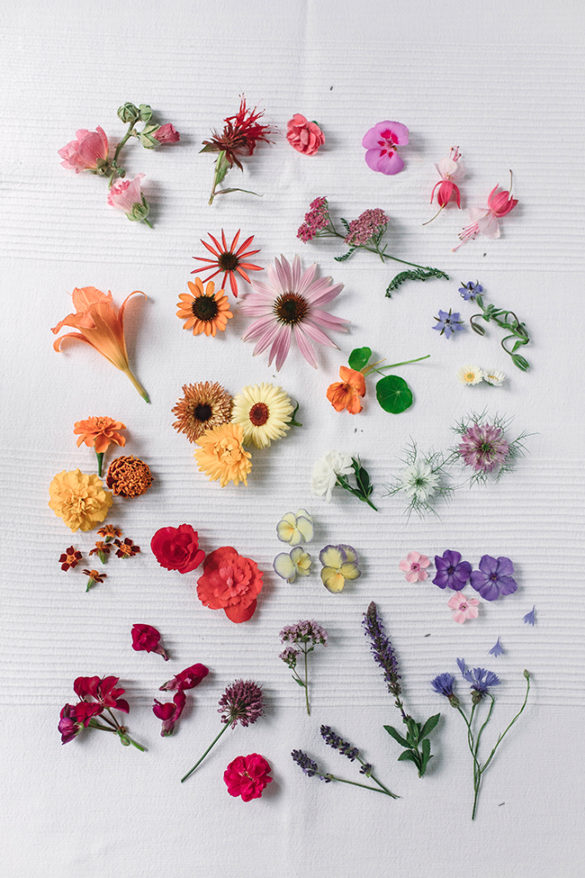 edible flowers for cake decoration, summer