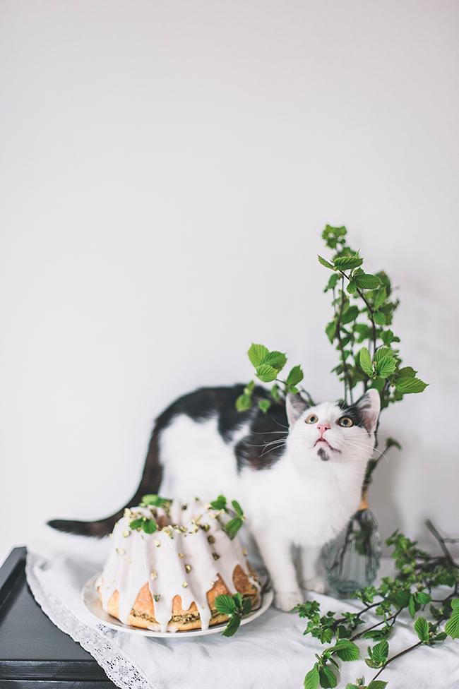 drożdżowa babka pistacjowa